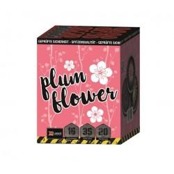 Xplode Plum Flower