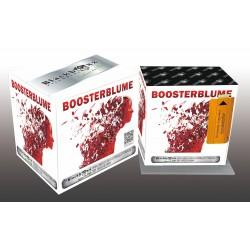 Blackboxx Boosterblume